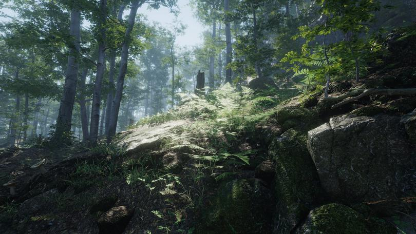 Forest Environment by NatureManufacture, Unity Asset Store